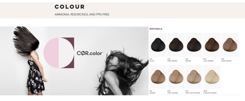 O&M webpage