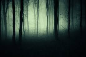 A dark wood shrouded in ghostly fog limiting visibility to a few black-shaped trees in the foreground