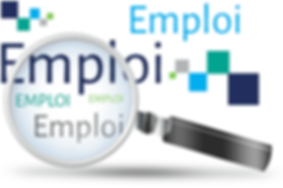 emploi-emploi1.png