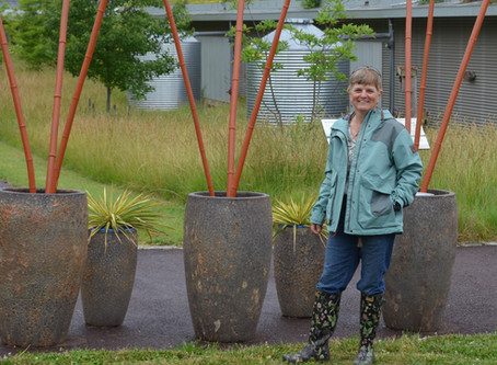 From Cytotechnology to Green Roofs: Louise Clarke has done it all