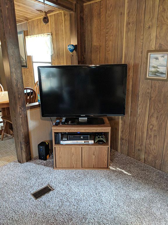 TV 42 inch.jpg
