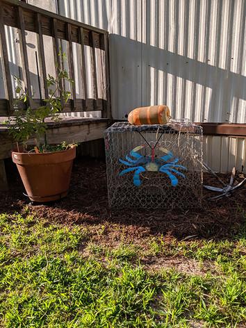 Backyard decor.jpg