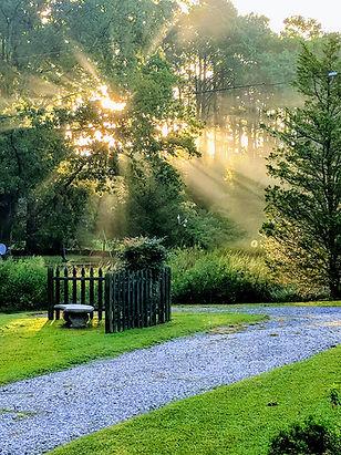 Morning sun.jpg