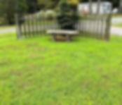frontyard.jpg