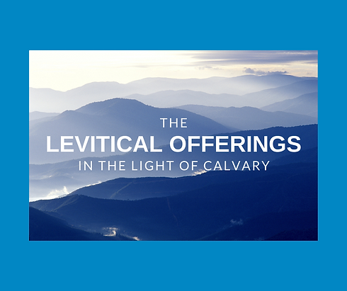 levitical offerings.png