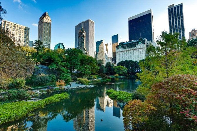 Central Park Tour and Activities