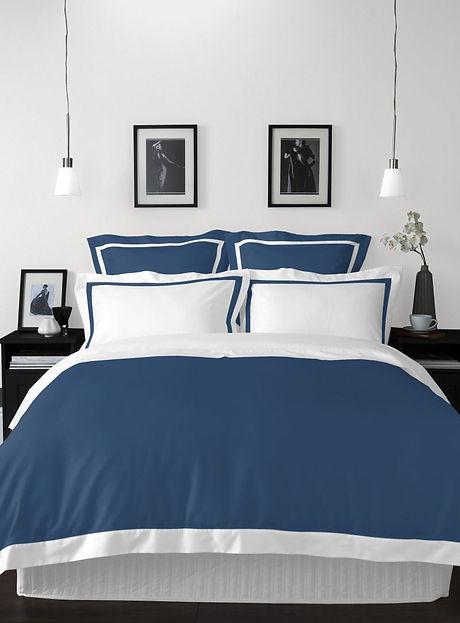 spaces blue comforter.jpg