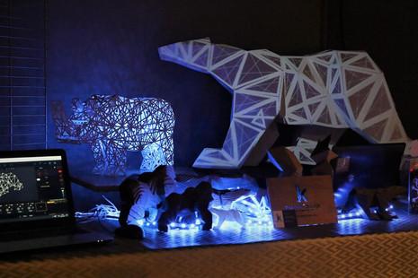 Bear Maapping light.jpg
