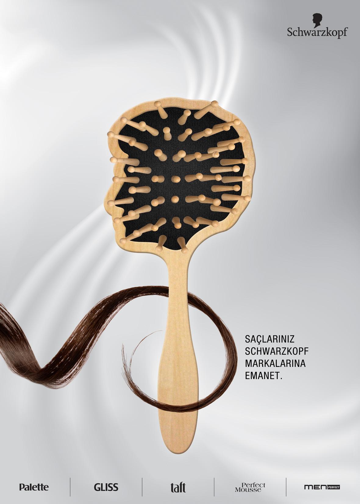 Sch-image-Dsg-Brush-SERDAL.jpg