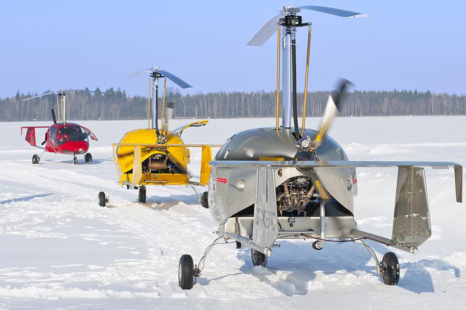 Voando na Neve