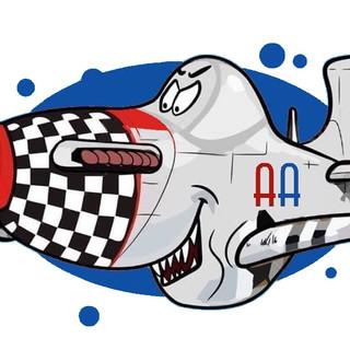 Americas Aviation