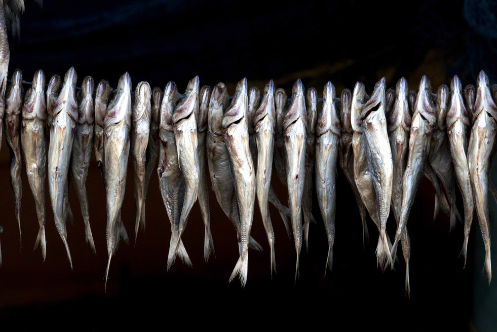 linear row of catch