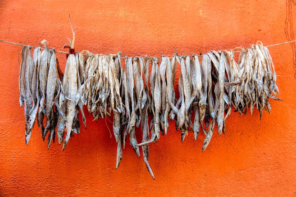Orange wall of Livelihood