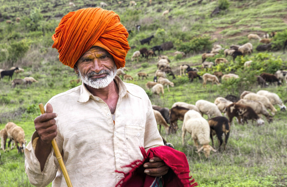 Hatkar dhangars nomadic life