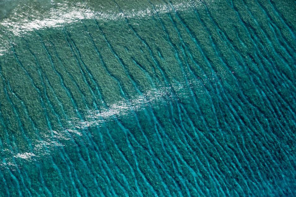 Sea bed sun shine Kavrathi island, Lakshvadeep