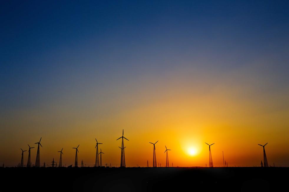 Windmills of the Thar desert