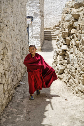 The young monks participate in some specific community activities