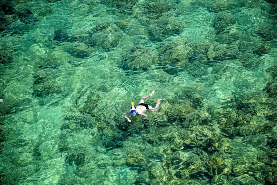 Diver- havelock, Andamans