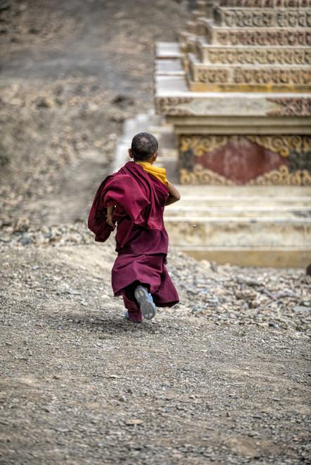A young monk at the Lamayaru Monastery