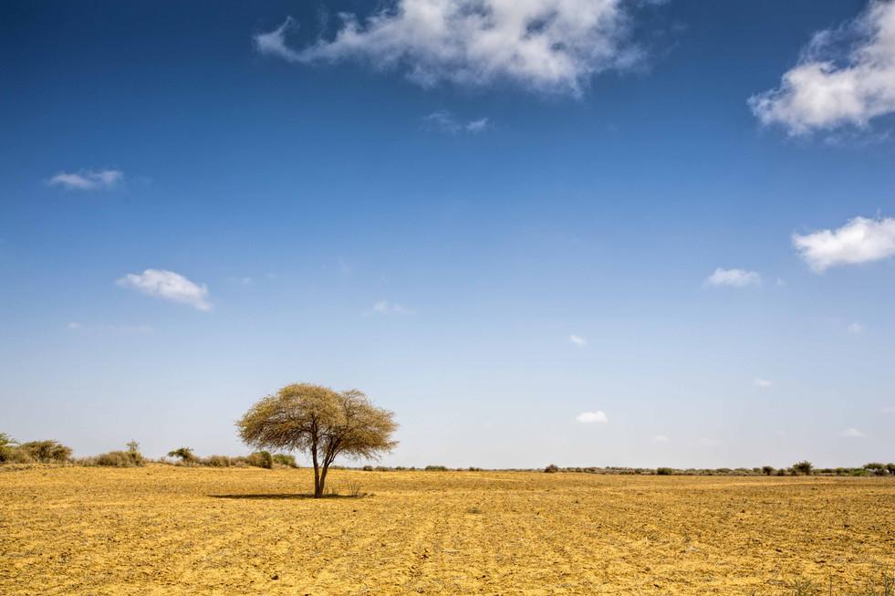 Arid and Azure landscape