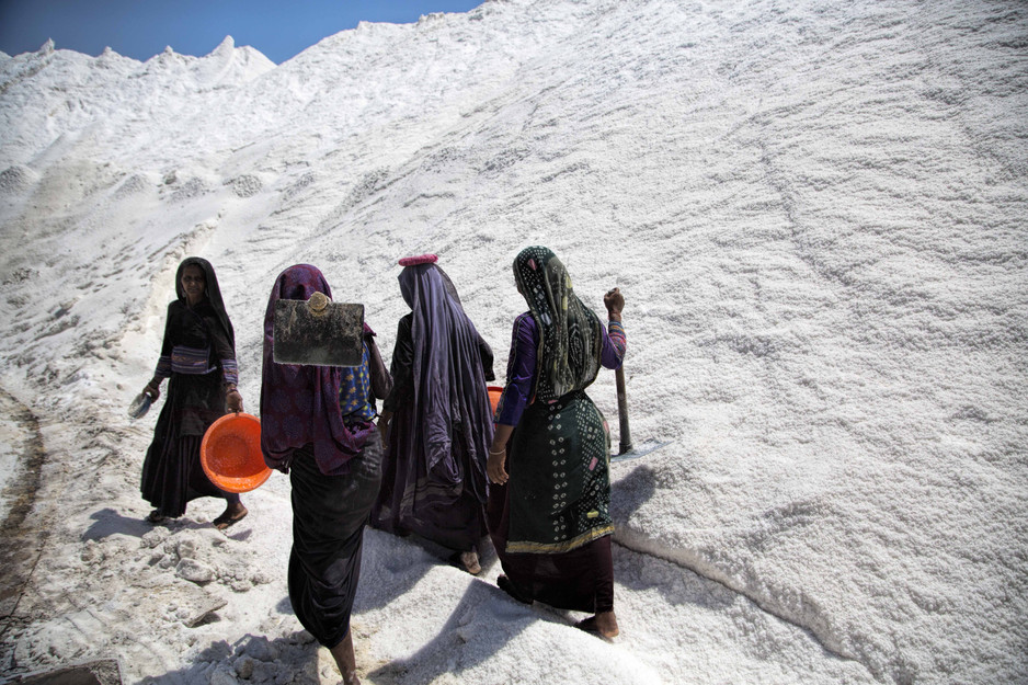 The Salt workers