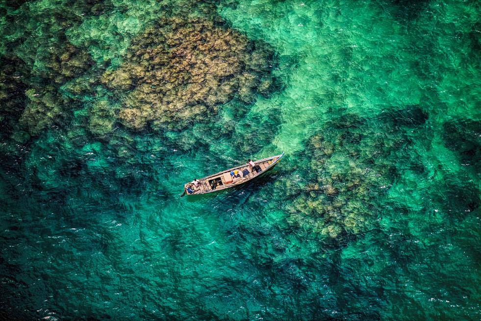 Coral & Callow, Havelock Island