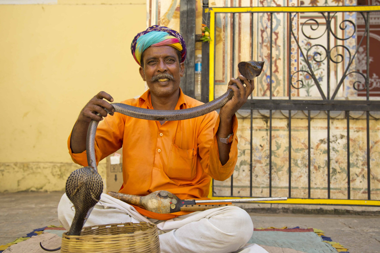 Snake charmers India