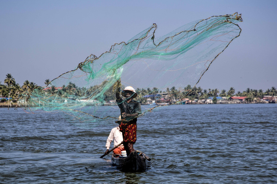 Spread of fish net, Ernakulam Channel
