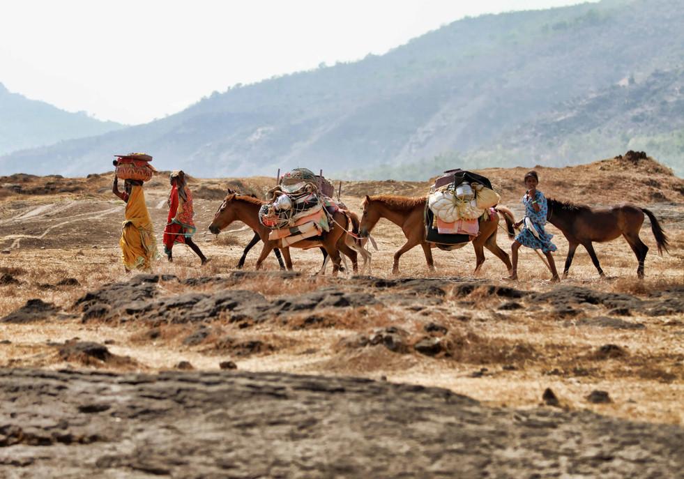 The Hatkar dhangar migration