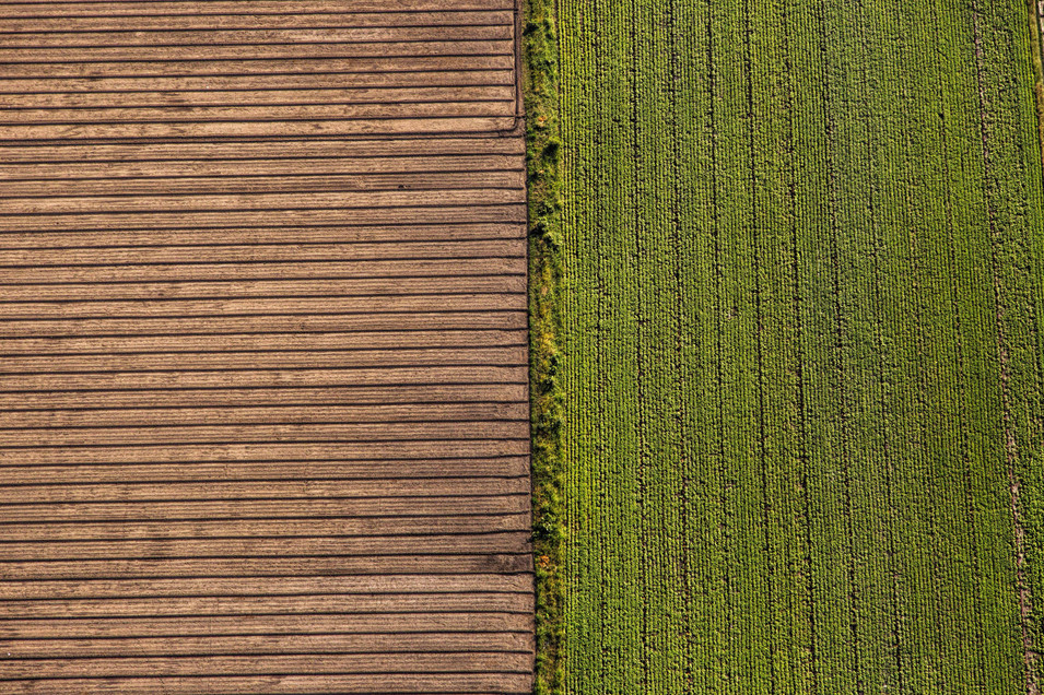 Symmetry in farming