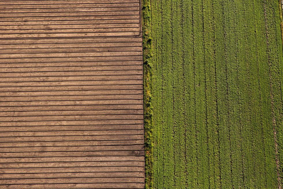 Symmetry in farming