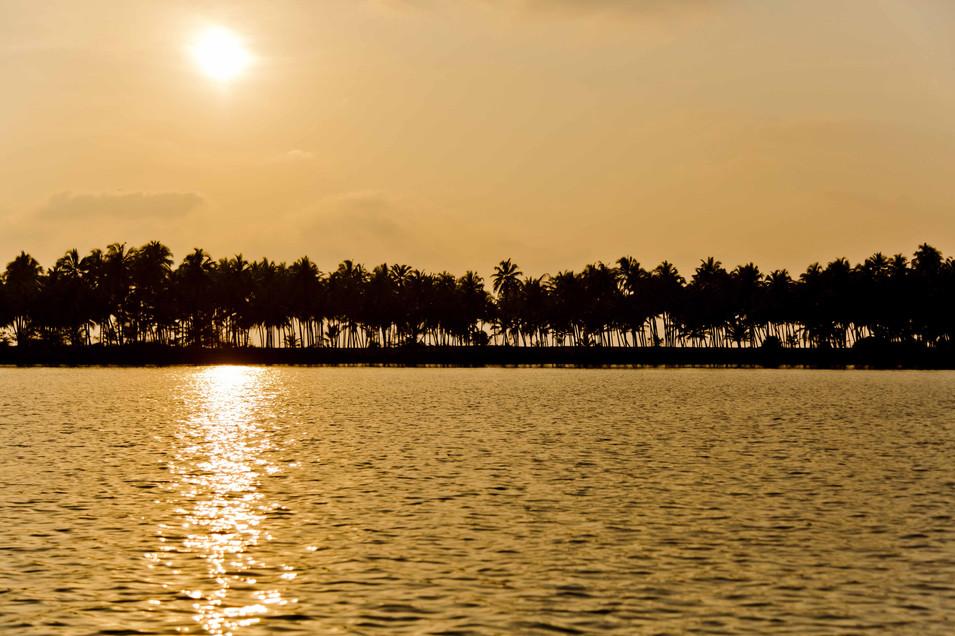 Backwaters Kavvayi, Kerela