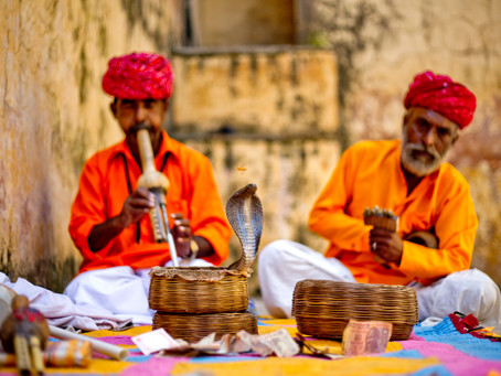 Snake charmers of India