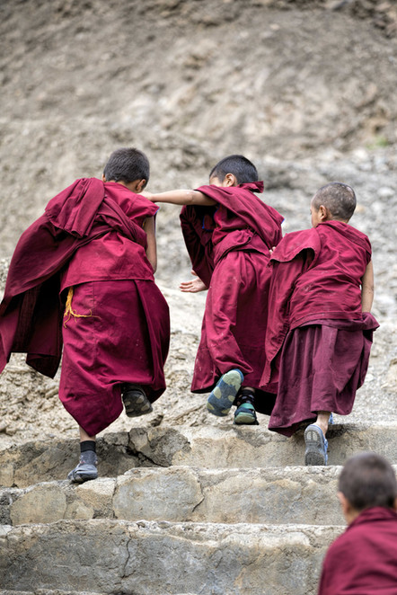 A group of young monks on the way to school