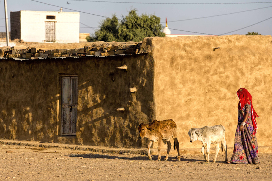 A typical house in Thar