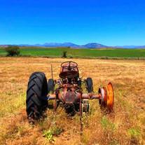 Artsy Tractor.jpg