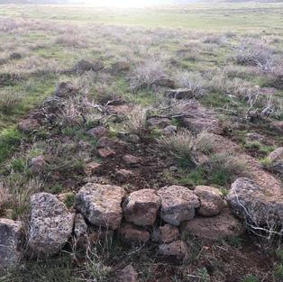 Homesteader ruins