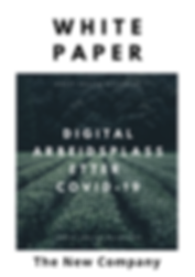 TheNewCompany-WhitePaper.png