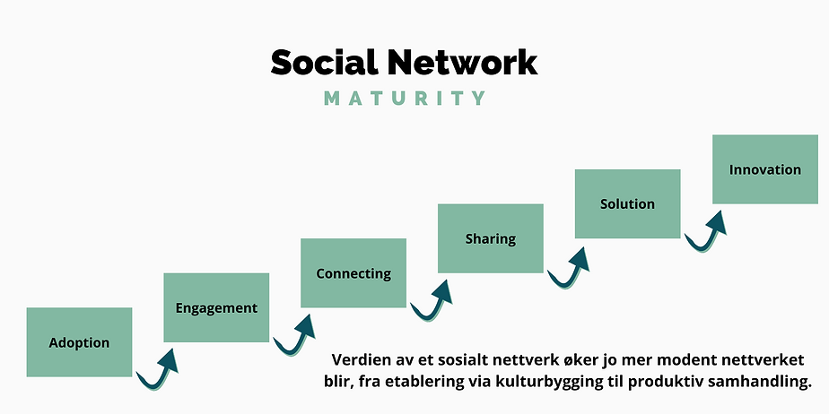 Social Network Ladder_TNC.png