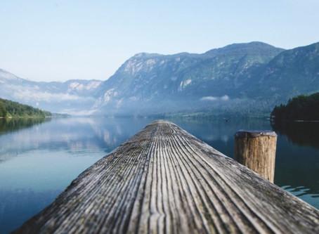 Velkommen til kommune-Norge, Colibo!
