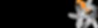 Comvenis AG's Company logo