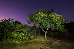 Jairo A Llano - fotografo paisaje-0842.jpg