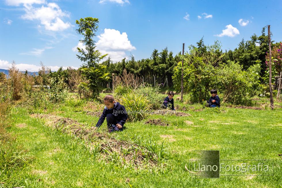 20Sol - Gimnasio Fontana - LlanoFotografia-7781