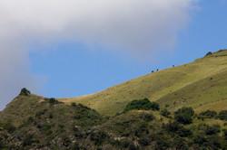 Jairo A Llano - fotografo paisaje-3910.jpg