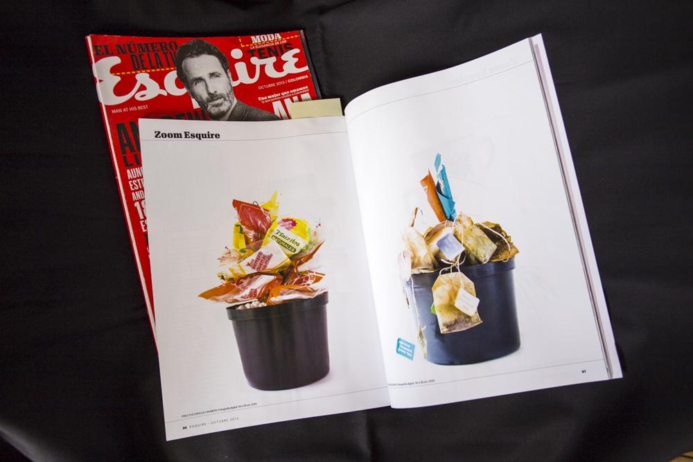 Esquire 2013 - Jardín Ornamental