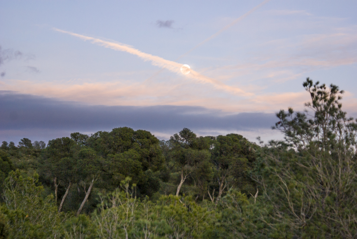 Jairo A Llano - fotografo paisaje-9665.jpg