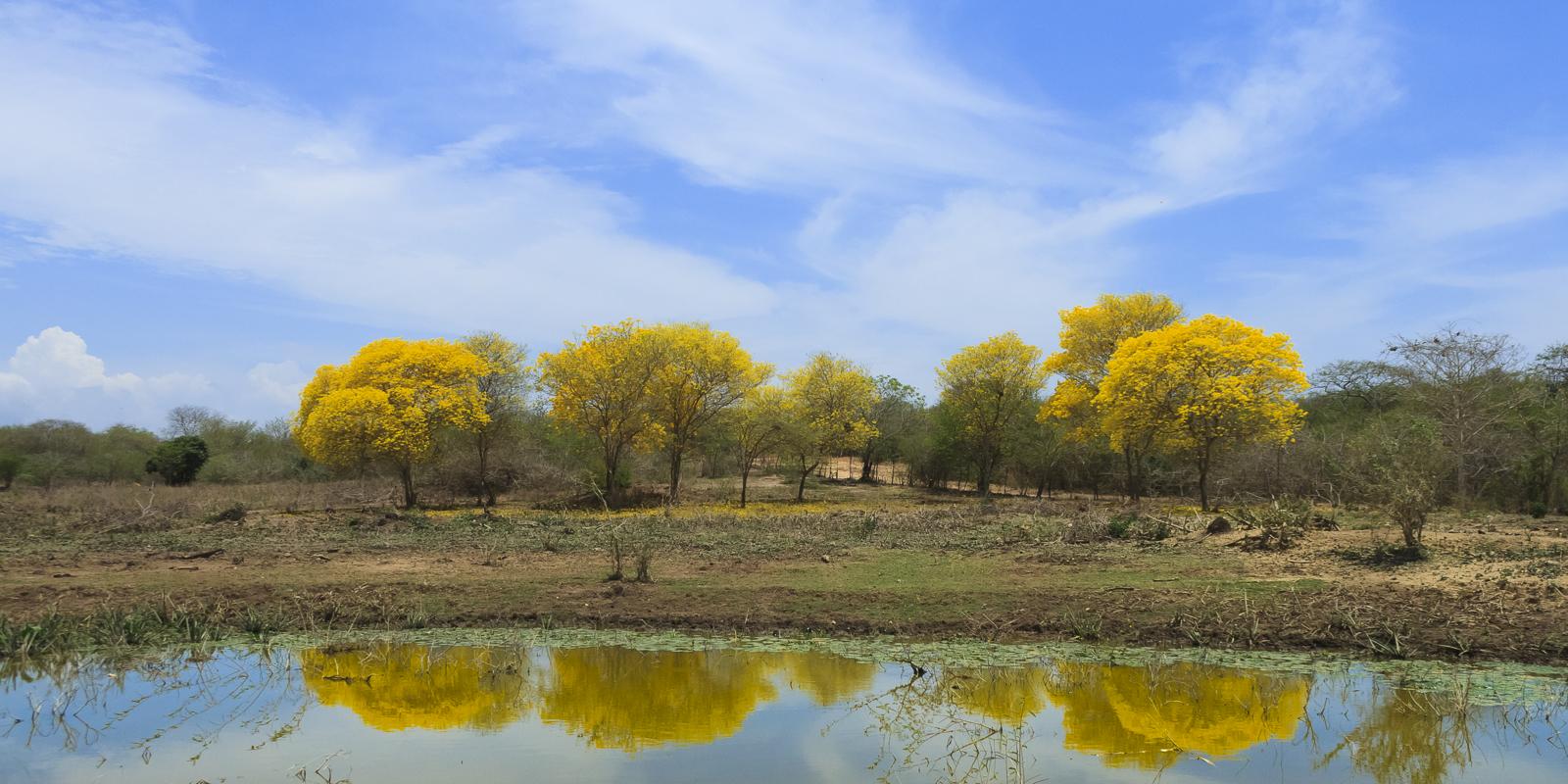 Jairo A Llano - fotografo paisaje-7831.jpg