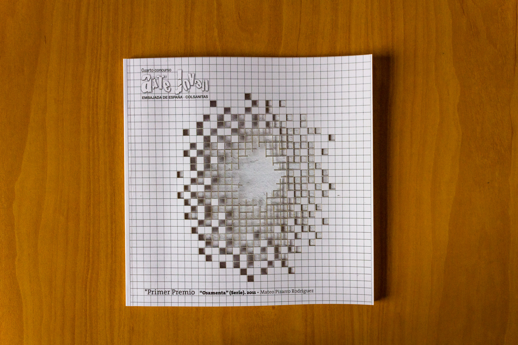 Catálogo Salón IV Arte Jóven