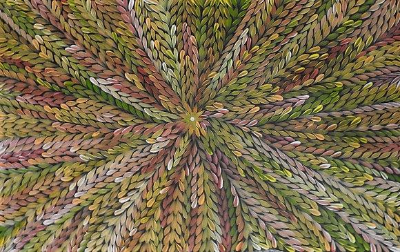 Bush Medicine Leaf