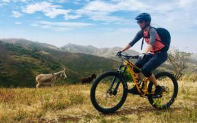 Bikerin fährt an zwei Eseln vorbei in Kap Verde